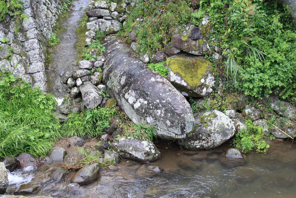 蛇石  CC BY