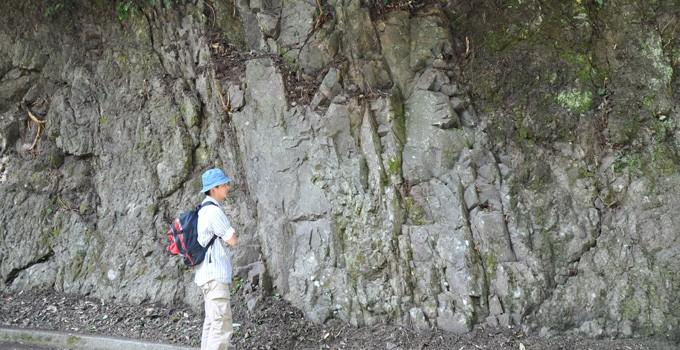 一色の枕状溶岩と岩脈 CC BY-SA