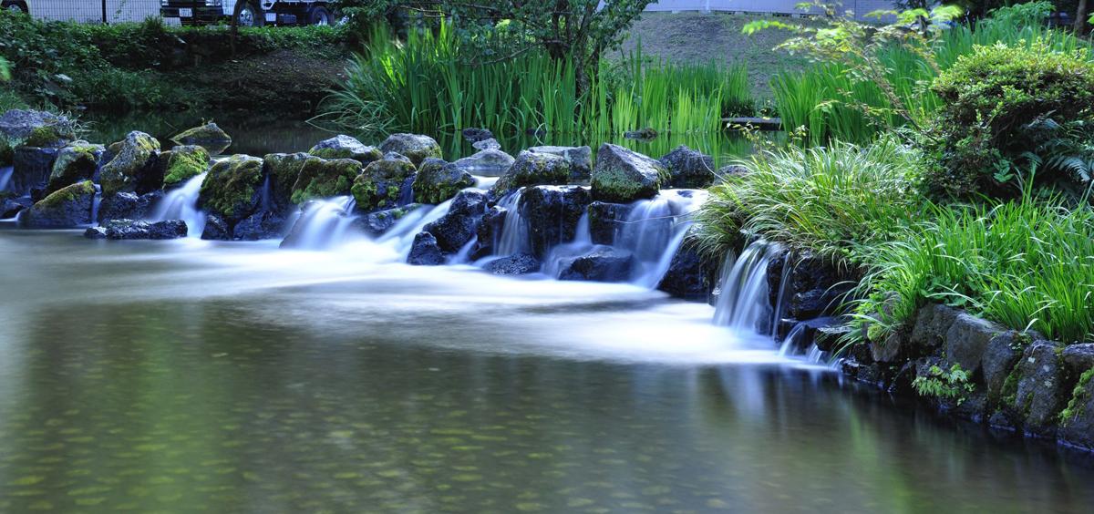 菰池・白滝公園