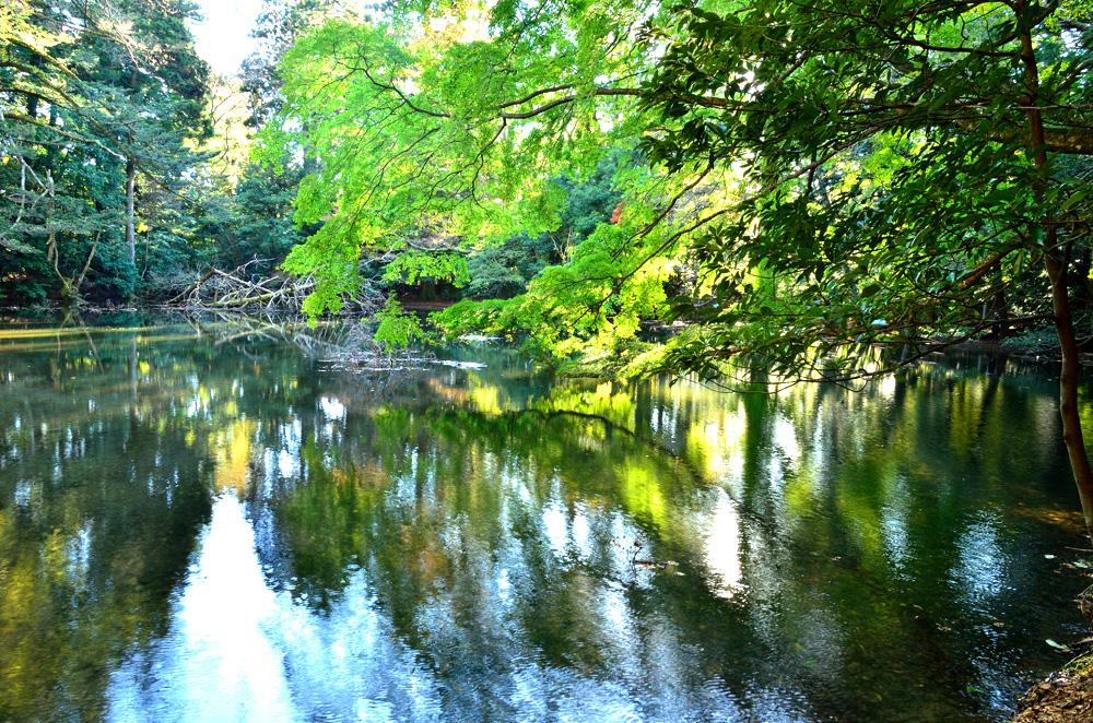 シラヌタの池
