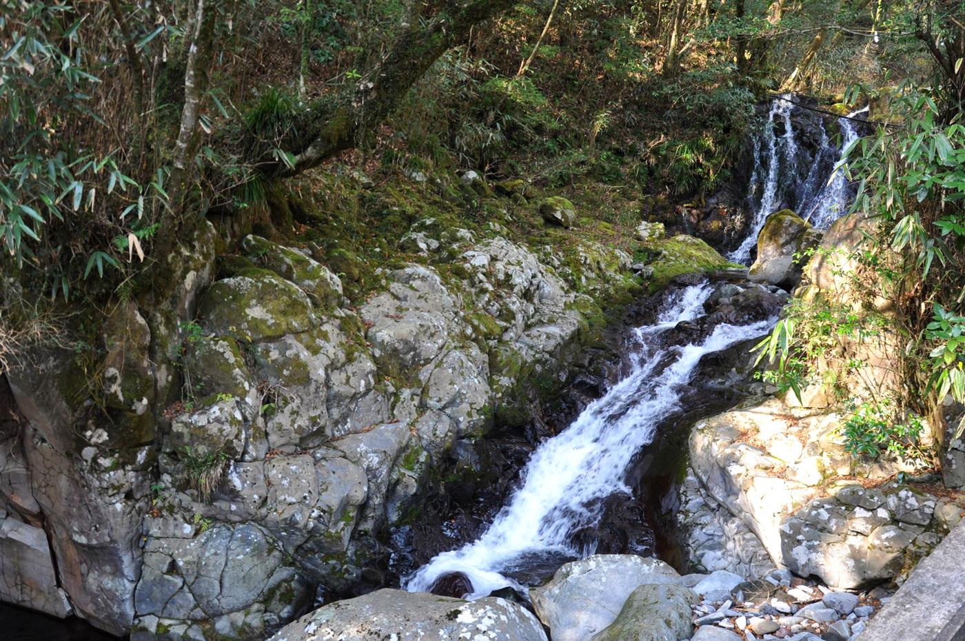 水神社境内を流れる沢 CC BY