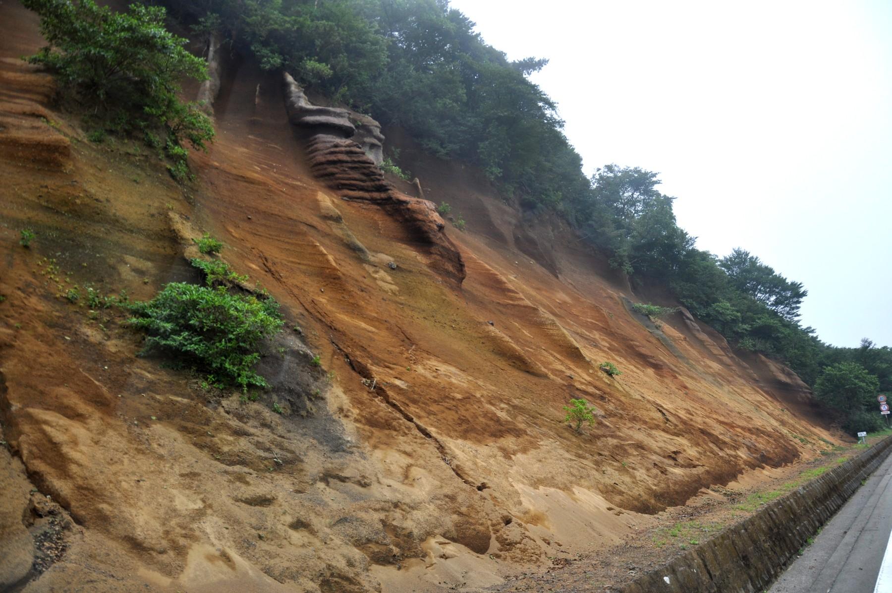 巣雲山スコリア丘の断面、長者原火山の火山灰層