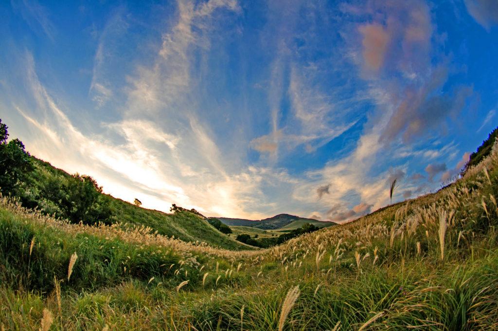 夕方の細野高原