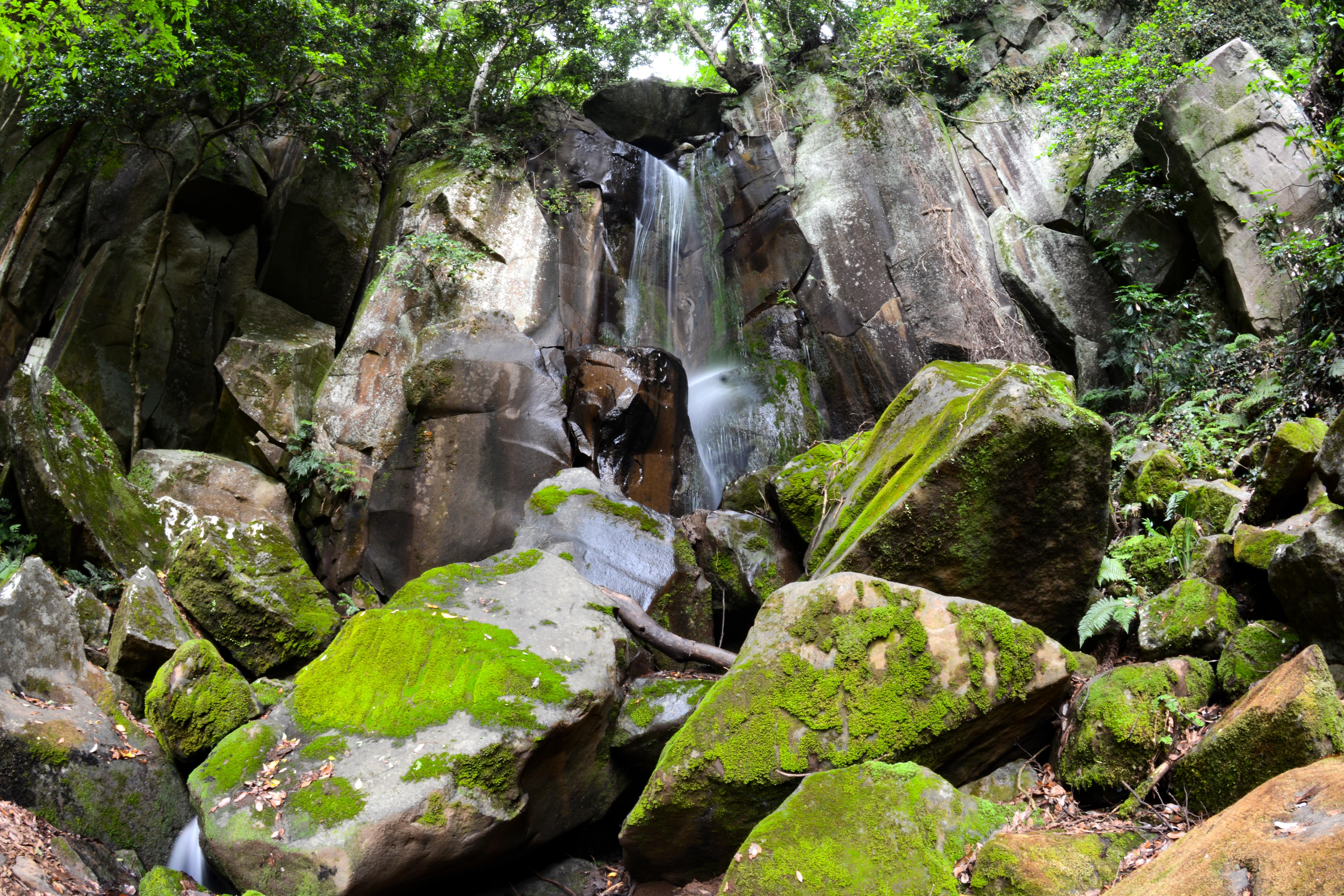 滝山不動の滝
